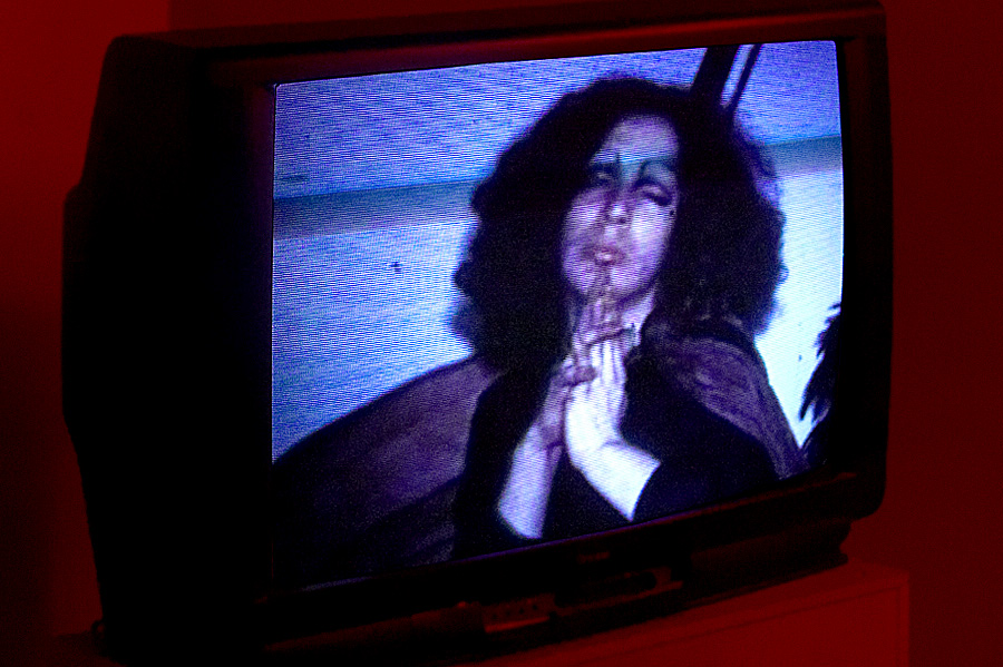 Films by Anton Perich and Ira Schneider- Hello Holly Woodlawn!