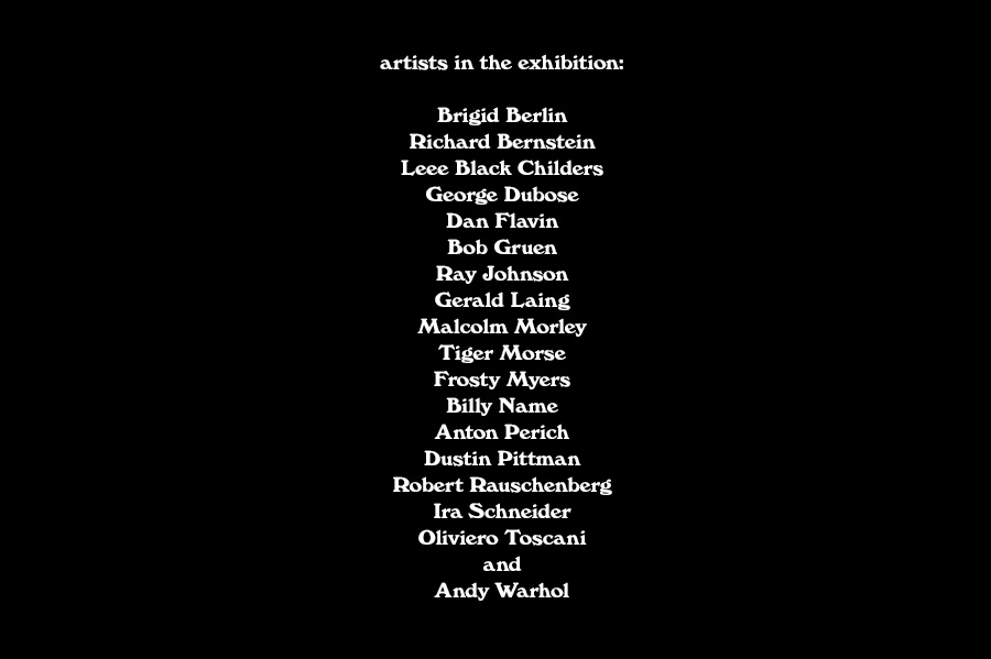 The Artists in the Show